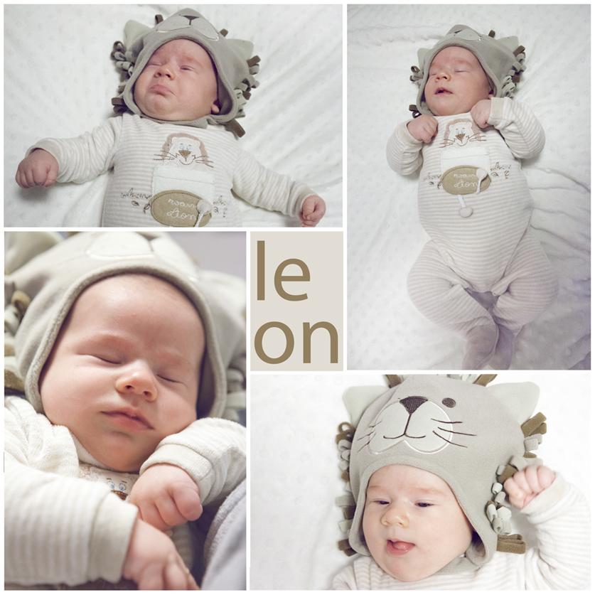 leon copia